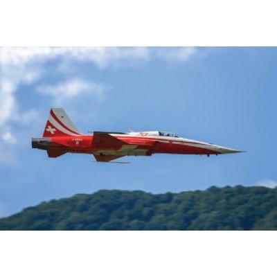 NORTHROP F-5E TIGER II PATROUILLE SUISSE - ITALERI 1395 - ESCALA 1/72