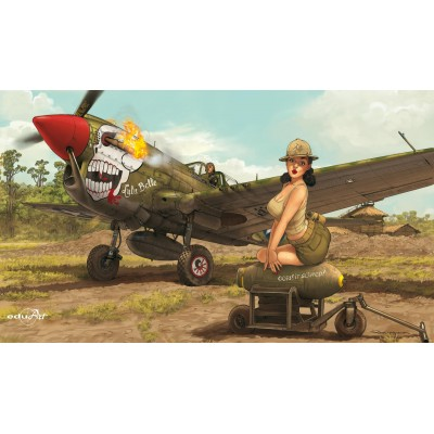 CURTISS P-40 N WARHAWK - Eduard 11104