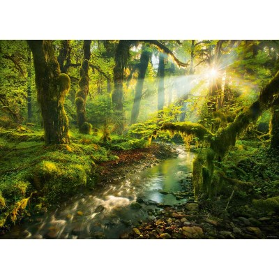 PUZZLE 1000 pzas MAGIC FORESTS, SPIRIT GARDEN - Heye 29771