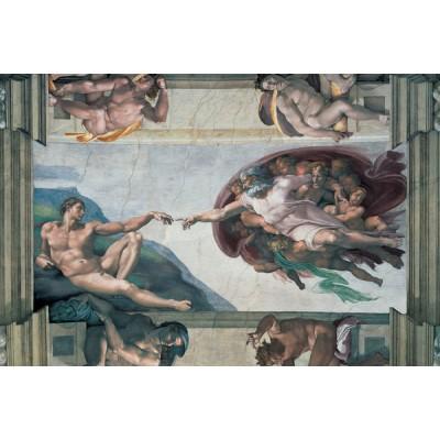 PUZZLE 5000 Pzas. LA CREACION DE ADAN, MICHELANGELO (1530 x 1010 mm)