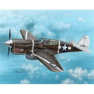 CURTISS P-40 F WARHAWK -1/72- Special Hobby SH72149
