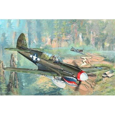 CURTISS P-40 N WarHawk -1/32- Trumpeter 02215