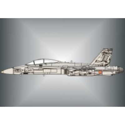 CALCAS EF-18 HORNET ALA Nº15 (75.000 horas) 1/48 - Series Españolas SE1148