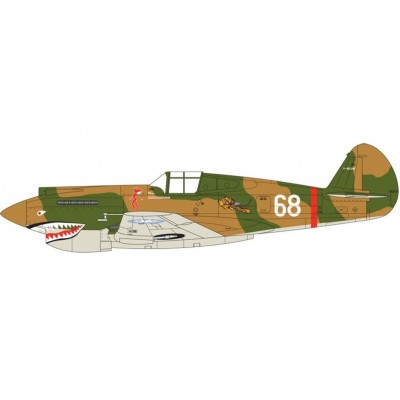 SET PINTURAS CURTISS HAWK 81 CHINA