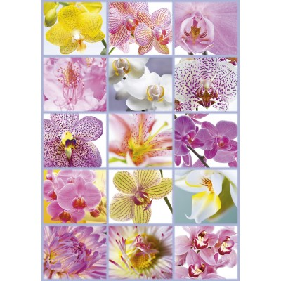 PUZZLE 1500 PZAS COLLAGE DE FLORES