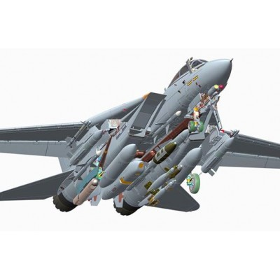 GRUMMAN F-14 D TOMCAT - AMK Avantgarde 88007