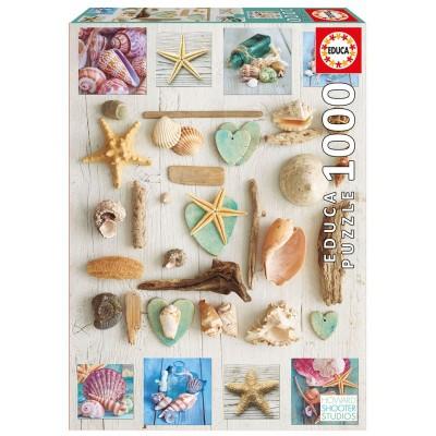 PUZZLE 1000 PZS COLAGE DE CARACOLAS - EDUCA 17658