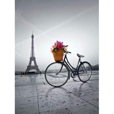 PUZZLE 500 pzs ROMANTIC PROMENADE IN PARIS - Clementoni 35014