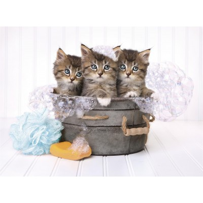 PUZZLE 500 pzs KITTENS AND SOAP (490 x 360 mm) - Clementoni 35065