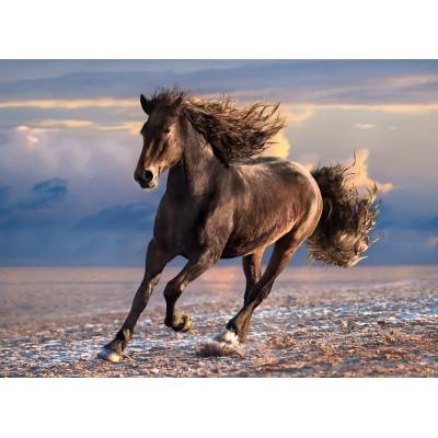 PUZZLE 1000 PZAS FREE HORSE - CLEMENTONI 39420 (69x50cms)