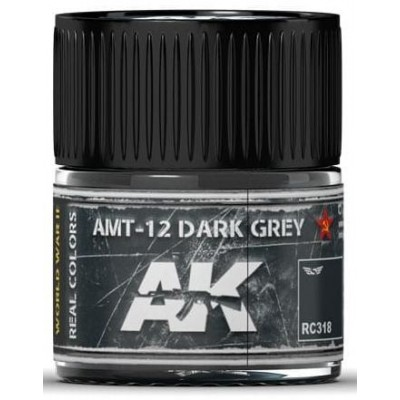 PINTURA REAL COLORS AMT-12 DRAK GREY (10 ml) - AK Interactive RC318