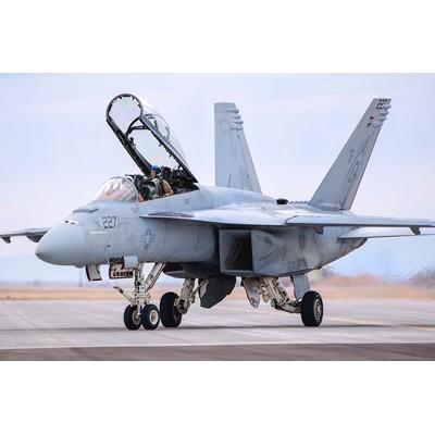 BOEING F/A-18 F SUPER HORNET -Escala 1/48- Hobby Boss 85813