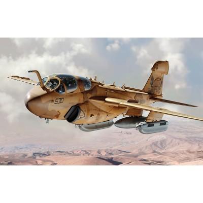 GRUMMAN EA-6 B PROWLER