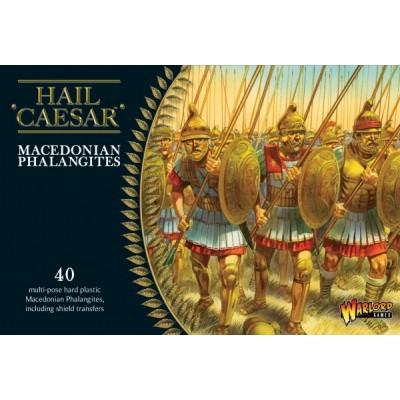 FALANGE MACEDONIA (40 piezas)