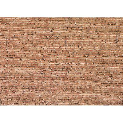 CARTULINA LADRILLO VIEJO (25 x 12,5 cm)